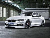 На BMW 4 F32 решётка радиатора