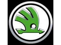 Решётка радиатора Skoda